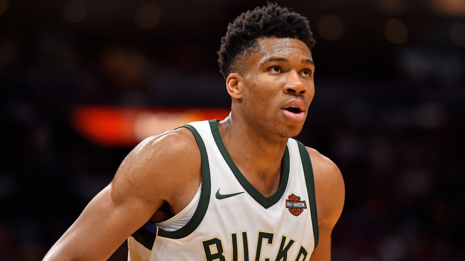 Giannis antetokounmpo reportedly devastated by jason kidd firing jasen vinlove usa today sports voltagebd Image collections