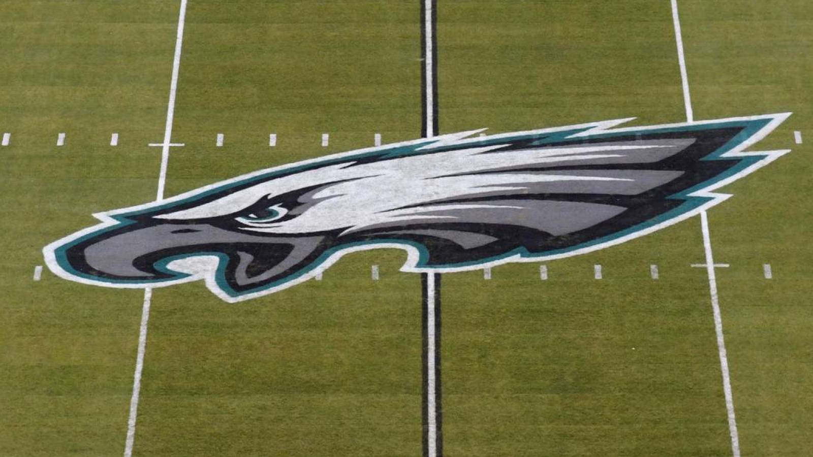 Eagles fan tossed from stadium allegedly punches police horse