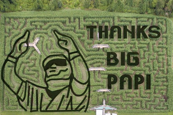 Big Papi had a corn maze created in his likeness...and it's awesome | Yardbarker.com