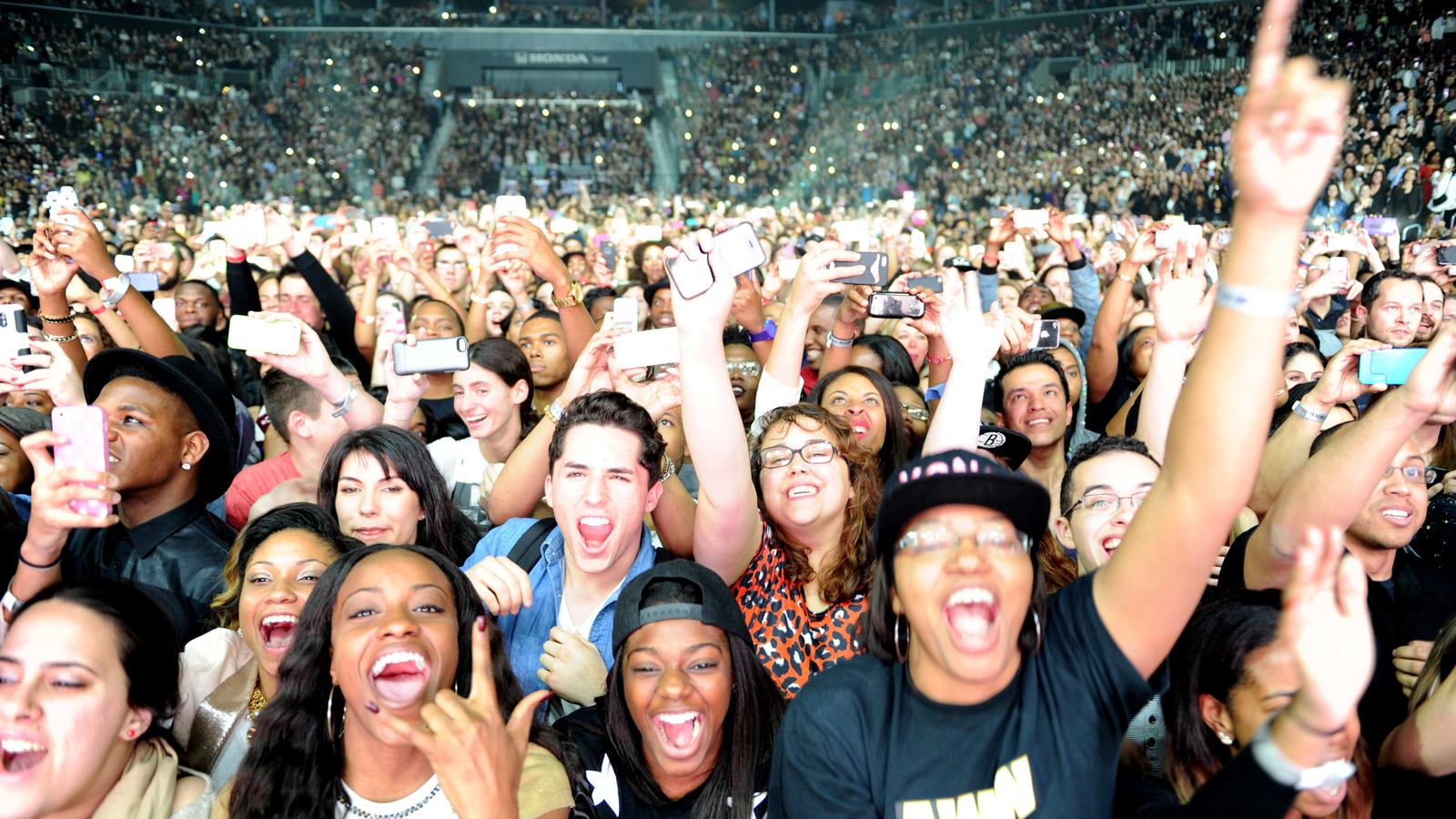 Which celebrities have the most loyal fan bases?