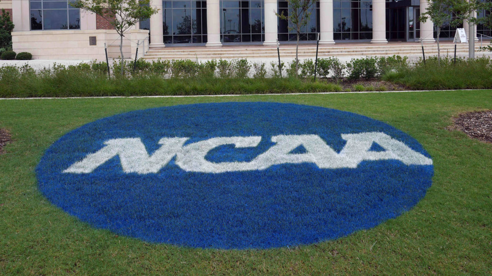 NCAA student-athletes can start earning money via name, image and likeness dealsZac Wassink, Yardbarker